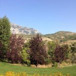 Mothers Day_Mountains_Utah-misc 914